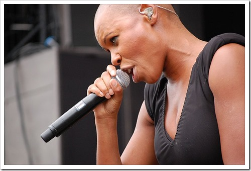 2013-11-28_48828998_skunk_anansie_two_766