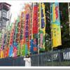 大相撲の本場所が毎年「必ず」開催されている日は、全部で40日