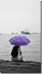 2014-03-20_umbrella-170962_640