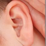 検証:メタリカのあの空耳を、青空文庫の収録作品で再現できるか