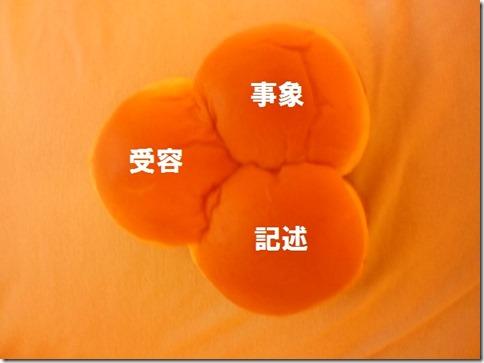 20141101_IMG_3pan_model