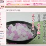 宮田亮平さんを知る語録(3):鵺のような金平糖じじい