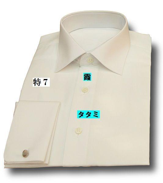 20161029_534px-Camisade