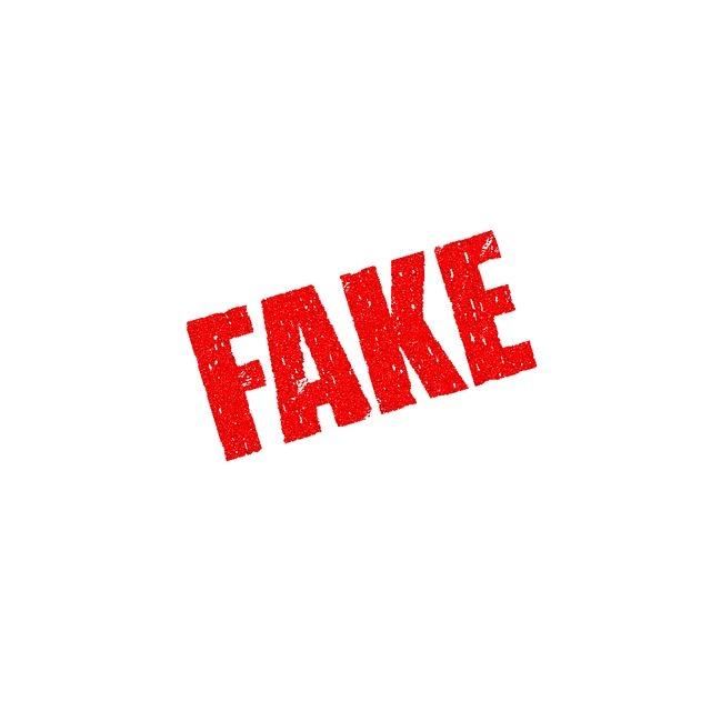 20170224_fake-1726362_640