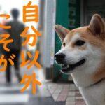 日本人の【自】意識は「自分以外こそが自分」―自粛要請をつかまえろ!(2)